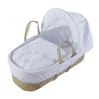 Rodger and Millie Mint Moses Basket